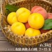 桃 黄桃&白桃のセット 3kg 7玉〜15玉 山形県産 送料無料 マンゴーピーチ 黄桃 モモ