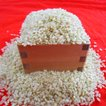 平成30年産 長野県飯山産 コシヒカリ 玄米 5キロ 条件付送料無料