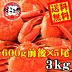 【送料無料】ボイルずわい蟹/姿 3kg(600g前後×5尾)【お歳暮 ギフト カニ】