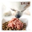 犬用 生肉ローテーション5点セット [簡単手作り食] 犬 手作りフード 生食【a0310】