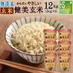 玄米 食べやすい 無洗米 時短 やさしい玄米 2kg×6袋ケース 29年産 (岩手県産 ひとめぼれ 使用) 特A