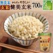 玄米 食べやすい 無洗米 時短 からだにやさしい健美玄米 700g 29年産 (単品購入の場合送料加算) (岩手ひとめぼれ) 特A