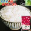 新米 無洗米 5kg お米 あきたこまち 30年産 滋賀県産 送料無料