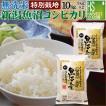 新米 無洗米 5kg×2 新潟県 魚沼産 コシヒカリ 10kg 令和元年年産 送料無料 特別栽培米