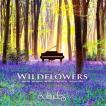 ワイルドフラワーズ(Solitudes ソリチューズCD)
