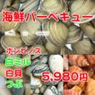 夏の海鮮BBQ 5980円 2〜3人前 大人気なセット