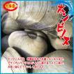 江戸前 活ホンビノス 約3kg (約20〜30個) ほんびのす 貝
