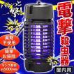 【害虫をパシッと撃退!】【ランプ寿命8,000時間】電...