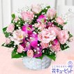 お祝い 花キューピットのトルコキキョウとデンファレのアレンジメント 花 プレゼント ギフト