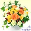 【お祝い】秋のふんわり花束
