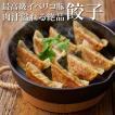 イベリコ豚 絶品 餃子 (60個) お取り寄せ グルメ 冷凍 食品 イベリコ豚専門店 特製 イベリコ屋 ※ ぎょうざ 6PC