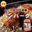 ハンバーグ 豚肉 黒豚 鹿児島 冷凍 食品 120g×10個 生ハンバーグ