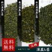 飲み比べ 静岡県産 掛川産 菊川産 牧之原産 深蒸し茶 各100gずつ (100g×3)