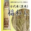 (送料無料)古代米(黒米)稲わら