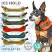 犬用品 IDOG ICE HOLD スムージーネッククーラー 保冷剤付 撥水 メール便OK