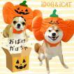 ハロウィン 犬の服 iDog 変身かぶりものスヌード おばけかぼちゃ アイドッグ