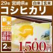 新米 29年産 宮崎県 コシヒカリ 2kg(白米/玄米)送料無料