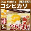 新米 29年産 宮崎県 コシヒカリ 5kg(白米/玄米)送料無料