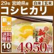 新米 29年産 宮崎県 コシヒカリ 10kg(5kg×2袋/白米/玄米)送料無料