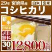 新米 29年産 宮崎県 コシヒカリ 30kg(白米27kg/玄米30kg)送料無料