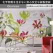 壁紙ドイツ製輸入壁紙 紙製/Gloriosa グロリオーサ グラフィック 百合の花 白レンガ 8-899