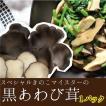 黒あわび茸・滋賀県産 スペシャルきのこマイスターがこだわって作った希少なきのこ だんらん 日曜の晩ごはん