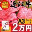 二次会 景品 目録 肉 近江牛 ギフト2万円 送料無料 パネル あすつく セット