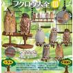 カプセルQミュージアム フクロウ大全 Vol.3 全5種セット