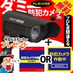 防犯カメラ ダミーカメラ ソーラー 電池交換不要 LED tect