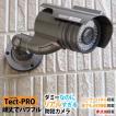 防犯カメラ ダミーカメラ 電池交換不要 赤点滅 LED テクトPRO ハイエンドモデル 送料無料