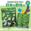 野鳥好き 野鳥紹介 知育 教育 「シルエット動物園ステッカー 日本の野鳥編」 カッティングシート 端材使用