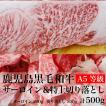 鹿児島黒毛和牛 ステーキ&切り落としセット 500g