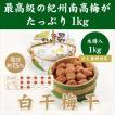 昔ながらの  酸っぱい 梅干し 紀州産 南高梅  白干 1kg 木樽入 熊野古道を訪ねて 塩分15% 贈答用 ギフト