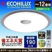LED シーリング ライト 天井 照明 器具 高効率モデル 12畳 5000lm CL12N-FEIII アイリスオーヤマ