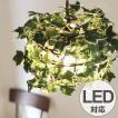ペンダントライト 1灯 ラタン アイビー ホワイト 天井照明 LED対応 CT触媒 ( 照明 照明器具 おしゃれ )
