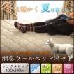 羊毛100% ベッドパッド シングルロング 敷きパッド 敷パッド ベットパット