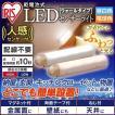 センサーライト LED 乾電池 人感 おまけ付き 乾電池式屋内センサーライト ウォールタイプ BSL40WN-U・BSL40WL-U アイリスオーヤマ 玄関灯