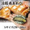 活き活き蝦夷アワビ 70g~80g 1個[あわび]