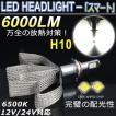 新登場 LEDヘッドライト H10 ヒートリボン CREE-XHP50 キャンセラー内蔵 6000LM 強烈な明るさ 12V/24V対応 18ヶ月保証