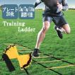 トレーニング ラダー10m 20枚 サッカー テニス 柔道 ...