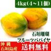 沖縄石垣島産フルーツパパイヤ 石垣珊瑚4kg (4〜11個) 送料無料