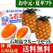 石垣島フルーツ詰め合わせギフト4玉セット(マンゴー2玉・ゴールドパイン2玉) 送料無料