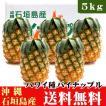 パイナップル(ハワイ種)5kg(4〜6玉)沖縄石垣島産