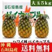 石垣島パイナップル(ハワイ種)大玉5kg(3〜4玉) 送料無料