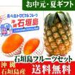 石垣島フルーツギフト3玉セット(ハワイ種パイン1玉・マンゴー2玉) 送料無料
