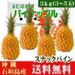 沖縄県石垣島産スナックパイン3kg(3〜5玉) 送料無料