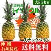 沖縄石垣島産スナックパイン 大玉5kg(3〜4玉) 送料無料