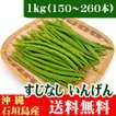 すじなしいんげん(生野菜)1kg 沖縄石垣島産 送料無料