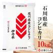 【お中元・のし承ります】 お米 10kg 送料無料 白米 28年産 石川県産コシヒカリ 10kg