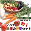 無農薬 有機栽培 季節の野菜セット 6-7品目 農園直送 送料無料